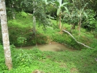 cheap property, near dominical, farm for sale, amazing deal, fire sale, platanillo, development opportunity, tourism, affordable lots, retirement, investment opportunity, close to San isidro, hot deal