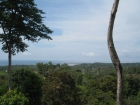 Uvita, titled property, residential lot, custom home, with pool, location, tourism, for sale, hotel, bed and breakfast, B&B, cabinas, rental income, investment opportunity, retirement, amenities, restaurants, near town center, near bank, supermarket, airp