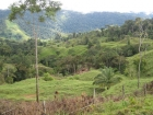 Away from it all, property, huge farm, large parcel, waterfall view, ocean view, mountain view, valley view, jungle view, pasture, cattle ranch, creek, river, suspension bridge, country road, retirement, expansive views