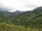 Quepos real estate, farm for sale, near quepos, Manuel Antonio, farms for sale, private, secluded, white water rafting, development opportunity, tourism, retirement opportunity, investment opportunity, ready develop, close to quepos, airport, country sett