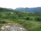 Farm for development , development parcel, land for development, near Dominical, platanillo, 147 hectares, 360 acres, huge farm, investment opportunity, planned community, affordable lots, rough roads, retirees, San Isidro, cooler climate.