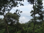 Property near Quepos, Manuel Antonio, beautiful views, mountain views, valley views, fruit trees, well maintained, great location, Naranjito, retirement, investment, private residence, country living, secluded, secure, safe, location, large lot, huge lot,