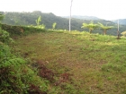 Farm for sale, estate property, lot, ocean view, tinamastes, near dominical, real estate, cooler climate, waterfall, potential building sites, 2 building sites ready, power, AyA, water, easy access, mountain views, valley views, panoramic views, 360 views