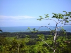 Uvita real estate, ocean view property, lot for sale, easy access, good raods, power, building site, water, views, ballena island, close to uvita, near uvita, near Domnical, near the beach, retirement, investment, opportunity