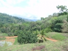 lot for sale, in Dominical, Dominical real estate,restaurants, super markets, Jungle, dominical real estate, self sustaining, rolling hills, close to town, beaches, restaurants, super markets, Jungle,
