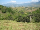 Plantanillo house for sale, farms for sale, dominical real estate, almost 10 acres, usable land, potential small development, 3 to 4 additional lots, creek, mountain and valley views, cool at night, views, back porch, simple design, family estate