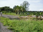 farm for sale, in Matapalo, Matapalo real estate, dominical real estate, self sustaining, rolling hills, close to town, beaches, restaurants, super markets, Jungle, private