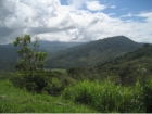 Lot for sale, in Lagunas, Lagunas real estate, sustainable development, dominical real estate, self sustaining, rolling hills, close to town, beaches, restaurants, super markets, Jungle, private