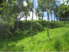 Lot for sale, in Lagunas, Lagunas real estate, sustainable development, dominical real estate, self sustaining, rolling hills, close to town, beaches, restaurants, super markets, Jungle, private Retirement, investment opportunity, waterfalls, Costa Rica