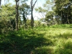 farm for sale, in Hatillo, Hatillo real estate, dominical real estate, self sustaining, rolling hills, close to town, beaches, restaurants, super markets, Jungle, private