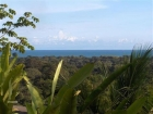 Farm for sale, Home, House, in Matapalo, Matapalo real estate, dominical real estate, self sustaining, rolling hills, close to town, beaches, restaurants, super markets, Jungle, private