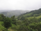 Dominical real estate, land for sale, farm for sale, mountain property, secluded, remote, mountain retreat, farm, fruit orchard, community, finished building site, infrastructure, investment, retirement, country, lifestyle