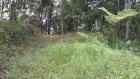 Dominical real estate, property for sale, great deal, fire sale, cheap property, farm, 5 acres, close to the beach, city, platanillo, supermarket, school, access, water, investment, dream home, property deals, bargain price, amazing opportunity