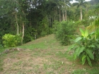 Dominical real estate, property for sale, ocean view lot, in escalares, dominicalito, dominical, ready to build, power, water, creek, island, view, marina vista lot #1