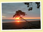 Hotels for sale in costa rica, beach hotel, beach resort, eco lodge for sale, matapalo, commercial real estate, dominical hotel for sale, tourism business for sale, near manuel Antonio, concession land, beach front property