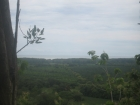 2 ocean view building sites, matapalo, dominical real estate, property for sale, 10 acres, close to quepos airport, quepos marina, manuel antonio, surf, beach, playa matapalo