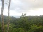 dominical real estate, ocean view lot, 5 minutes to dominical, ocean view lot, baru, dominical, playa, beach property, close to everything, easy access, property for sale in Dominical