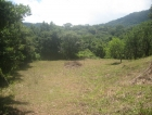 dominical real estate, commercial property, hotel property in dominical, estate proparty, farm in dominical, best views in dominical, usable land, development land, for sale, ocean view, close to road, easy access