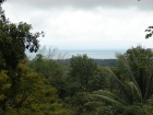 uvita real estate, cabin property, ocean view property for sale, land for sale in uvita, perfect for eco-lodge cabinas, eco lodge location, usable land for cabins, close to the beach, 1 km to the road
