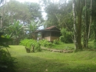 dominical cabin rental, long term rental, in dominical, cabinas for rent, cheap cabins, rental property, rental homes in dominical, gated farm, wild life, nature, secure rentals, partial ocean view