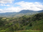 small farm , for sale, phase II, Platanillo, near dominical, close to San Isidro, Property for sale in Costa Rica, Property near Dominical, ocean view, retirement, Uvita Real Estate, profitable investment, paradise, mountain view, secure, private, Souther