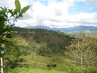 small farm, 15 mins form Dominical, Land for sale, in Platanillo, retirement Dominical property, Uvita Real Estate, piece of paradise, baby boomer, Costa Rica, secure, Golf course, private, peaceful, great price, Matapolo, bargain property, waves, ocean,