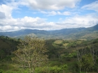 small farm, Platanillo, near dominical, close to San Isidro, Property for sale in Costa Rica, Property near Dominical, ocean view, retirement, Uvita Real Estate, profitable investment, paradise, mountain view, secure, private, Southern coast, profit, valu