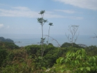 dominical real estate, dominical property, jungle proeprty, ocean view property, close to the ebach, close to dominical, monkeys, wild life, dominicalito bay views, over 12 acres