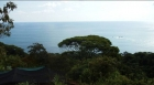Panoramic Ocean view minutes from Dominical, Costa Rica Real estate, Panoramic Ocean view minutes from Dominical, Costa Rica Real estate, Panoramic Ocean view minutes from Dominical, Costa Rica Real estate, Panoramic Ocean view minutes from Dominical, Cos