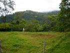 uvita real estate, ocean view lot for sale, whales tail view, land for sale in uvita, uvita property