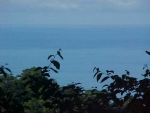 Land for sale, ocean view, retirement Dominical property, Uvita Real Estate, piece of paradise, baby boomer, Costa Rica, secure, Golf course, private, peaceful, great price, Matapolo, bargain property, waves, ocean, view, mountain, close to beach