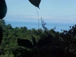 uvita, farms for sale in uvita, Ocean view, for sale, property in Dominical, Property in Costa Rica, Retirement opportunity, close to the beach, airport, secure, private, jungle, wildlife, mountain view, investment opportunity, Dominical Real Estate